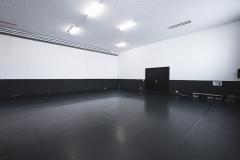 Studio 1 - 150 sqm, acrobatic matting, dance marley